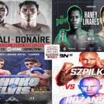 Mosaico de los mejores combates de la semana (28al30/5/2021)