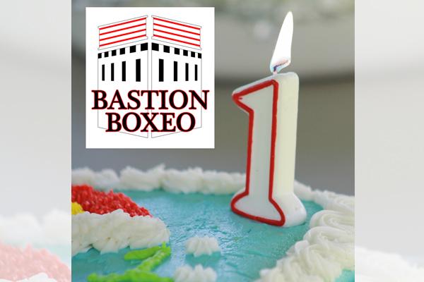 Un año de BastiónBoxeo.com