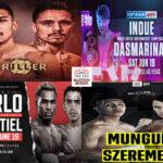 Mosaico de los mejores combates de la semana (16al19-6-2021)