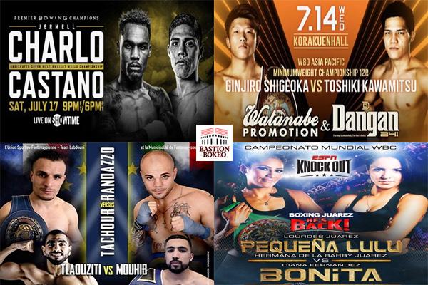 Mosaico de lo mejores combates de la semana (13al17-7-2021)